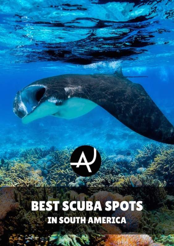 The 8 Best Scuba Diving Sites In South America