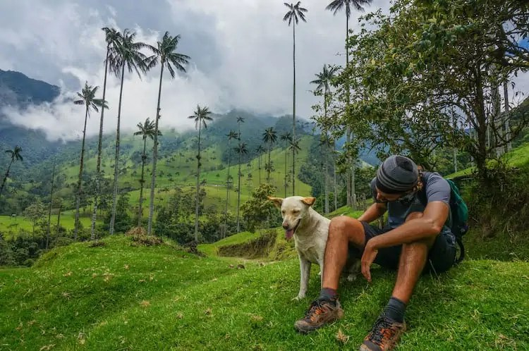 SURREAL LANDSCAPES & TOWERING PALM TREES: HIKING IN THE COCORA VALLEY, COLOMBIA
