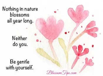Soothing Solutions for Painful Periods