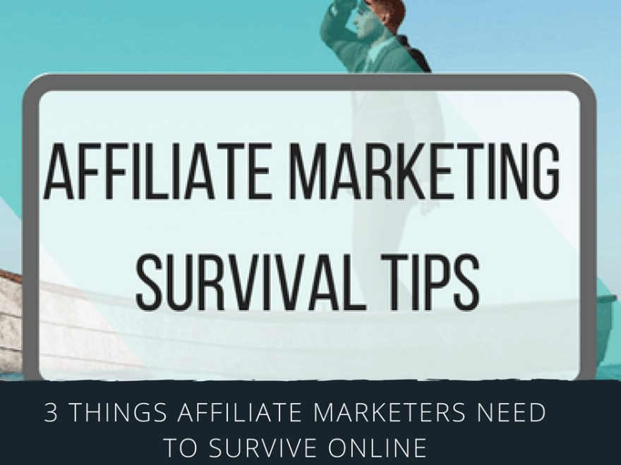 post3 - The 3 Things All Affiliate Marketers Need To Survive Online