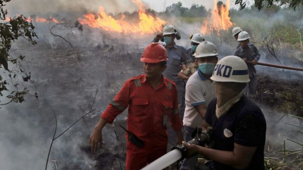 Firemen on the frontline in South Sumatra at the weekend. Wildfires caused by illegal land clearing on Indonesia's Sumatra and Borneo islands often spread choking haze to neighbouring countries such as Malaysia and Singapore.
