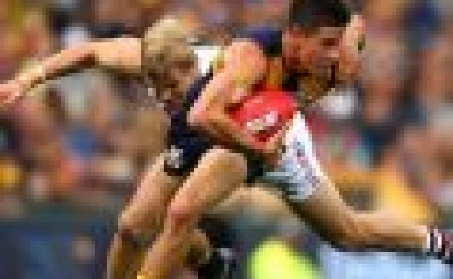 Afl News Read The Latest Footy News Real Footy
