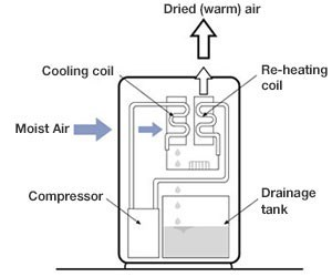 How does a dehumidifier work? • The Air Geeks, reviews of