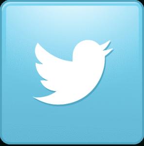 The Allman Team twitter link
