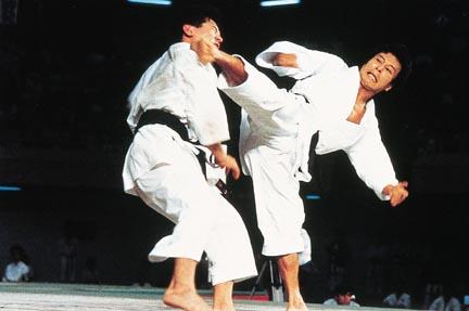 https://i0.wp.com/www.thealmightyguru.com/Database/Pictures/Karate.jpg