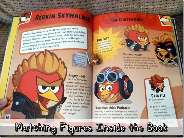 The Angel Forever Tuesday Tales Angry Birds Star Wars Character Encyclopedia