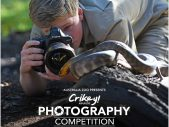 australia zoo photography competition