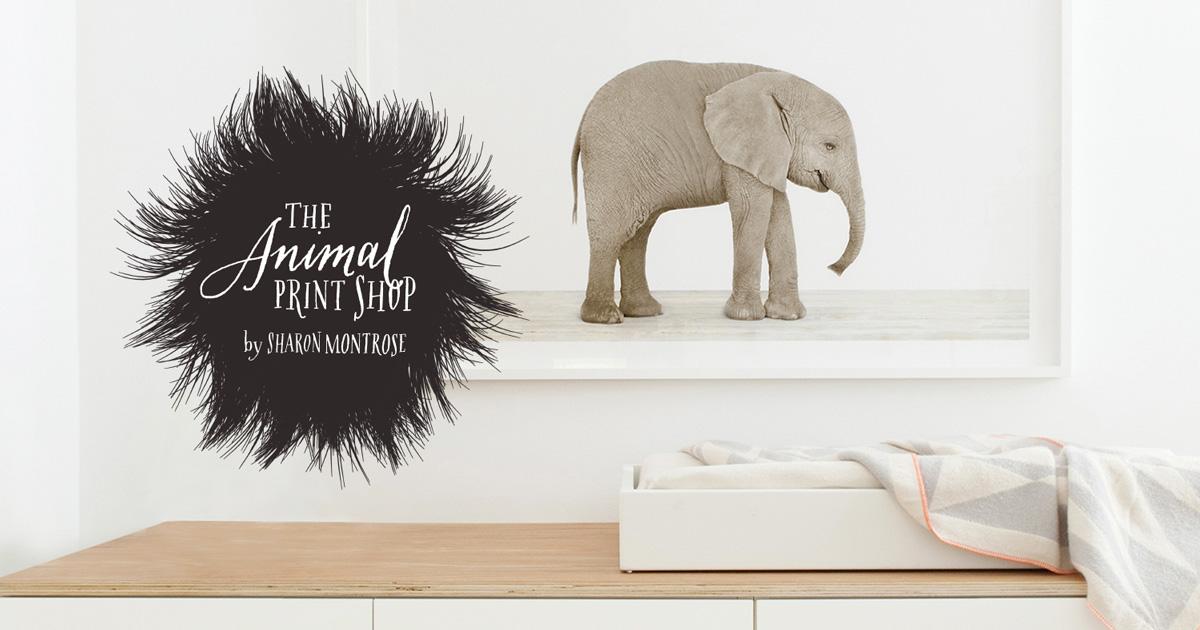fd14b0876cc0 The Animal Print Shop — Sharon Montrose