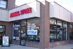 The Animal Store