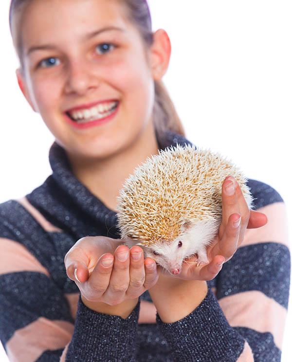 Girl with hedgehog pocket pets