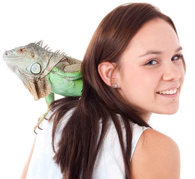 Iguana with woman