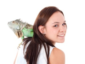 Reptiles: Iguana with woman