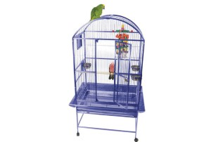 25% bird cages