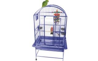 25% bird cages
