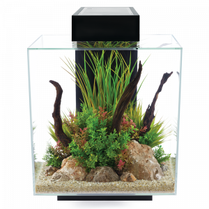 Fluval Edge 12-gallon