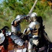 Animal Joke #35 Knights Swords