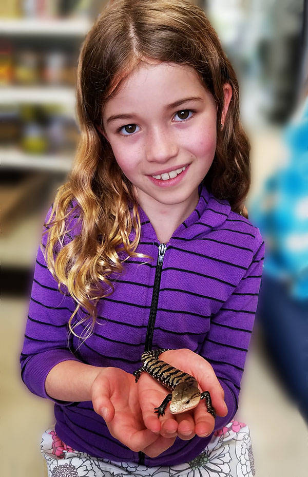 The Animal Store Eden and her new Pet Blue-Tongued Skink