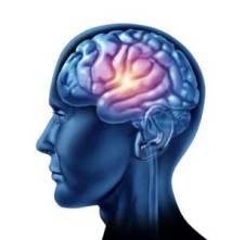 Fundamentals of pharmacology - brain stimulation