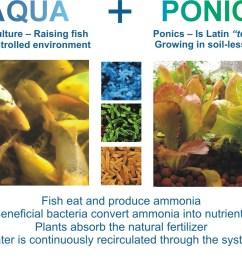 aquaponics defined [ 1000 x 823 Pixel ]