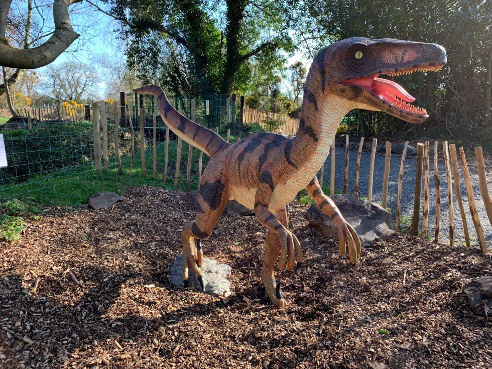 Jurassic Ark