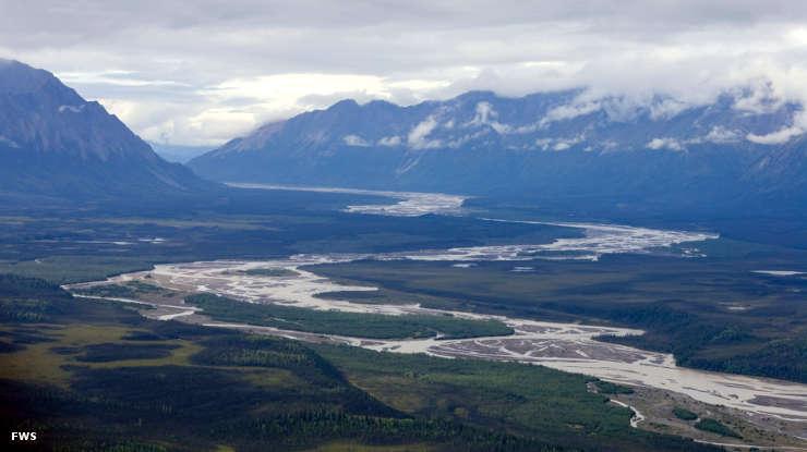 Tetlin National Wildlife Refuge Alaska National Wildlife