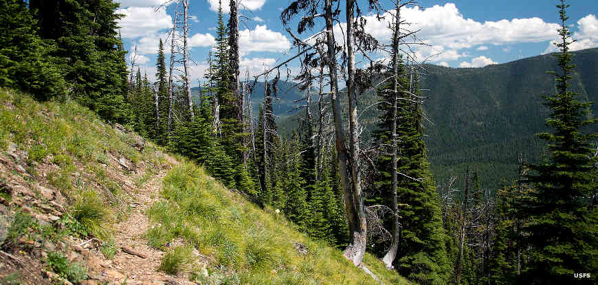 Kootenai National Forest  The Sights and Sites of America
