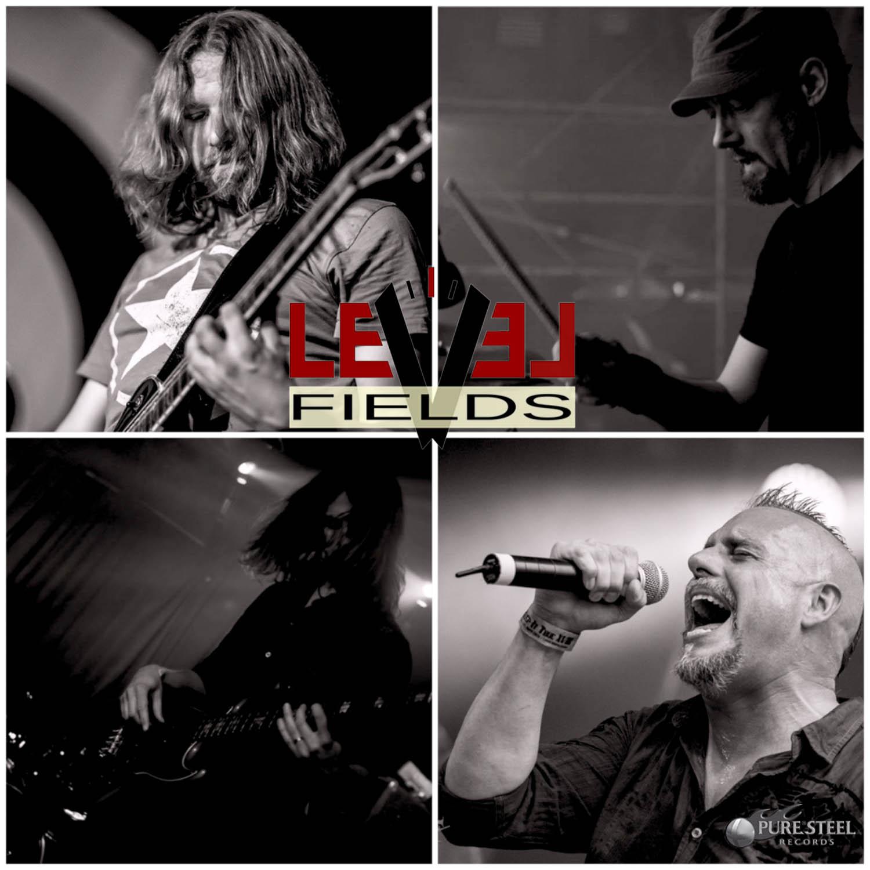 Level Fields