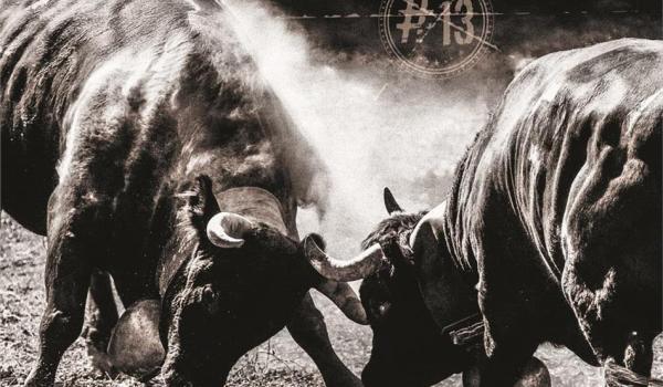 Gotthard kündigen Album #13 an