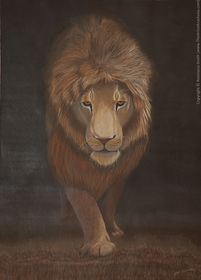 Lions Rarely Sleep at Night (55.75x76cm, 22x30in) Coloured Pencil on Sanded Paper