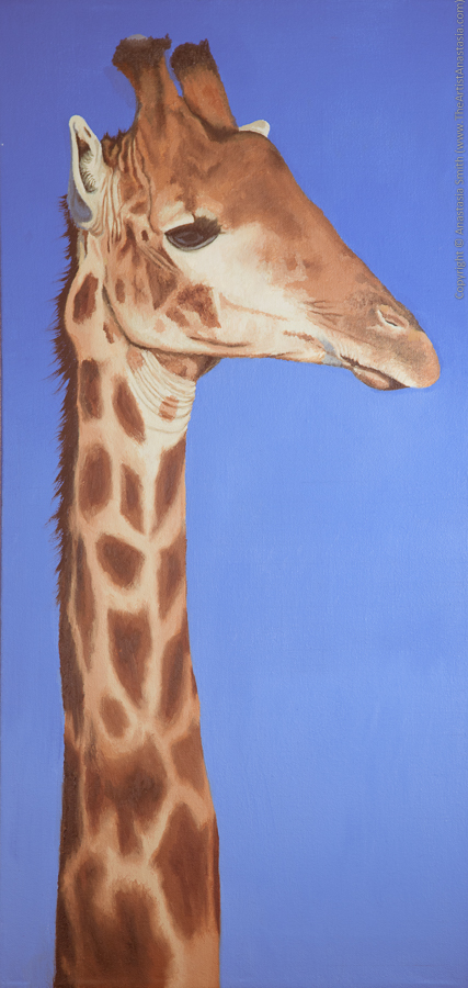 A Head Above: Giraffe (60x30cm, 24x12in) Oil on Canvas