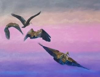 Hadeda Habits, 76x101cm, Oil on Canvas