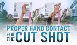 3-25-17-WEBSITE-Cut-shot