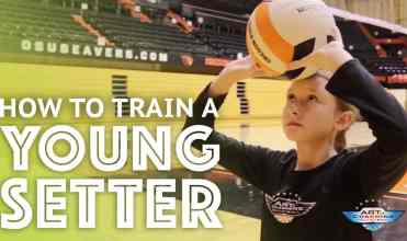 1-8-16-how-to-train-a-young-setter