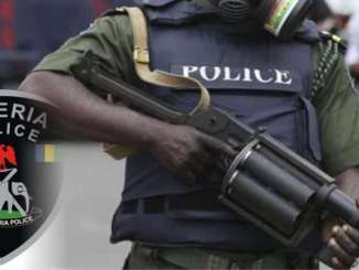Police recover arms, ammunition from stolen Journalist's vehicle in Delta