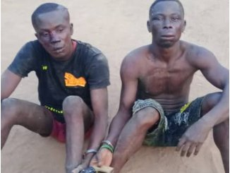 Ogun: Two arrested after shooting okada rider in Ifo