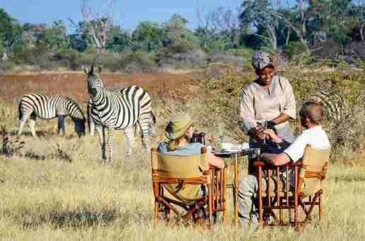 Wilderness Safaris begins rebuild of Mombo Concession camps, Botswana