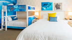 Wyndham Grand Clearwater Beach & Clearwater Marine Aquarium partner for themed guest rooms