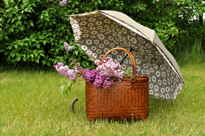 image of lilacs and umbrella in grass the artyologist