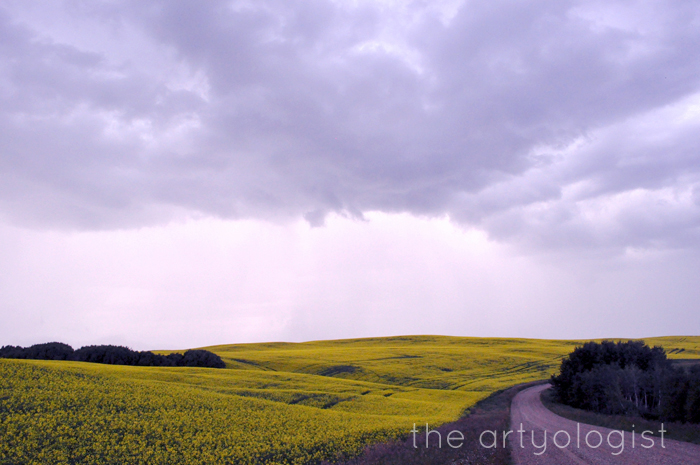 """Ready for Poiret's Thousand and Second Night"""" The Artyologist Road with Canola"""