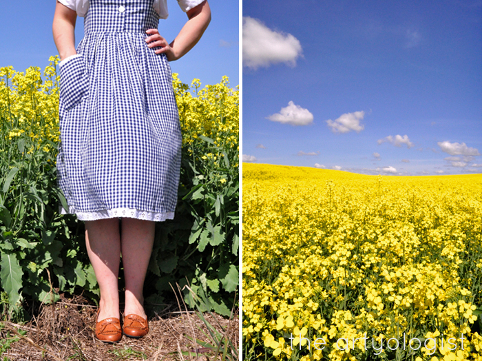 shoes with navy gingham dress and canola field the artyologist