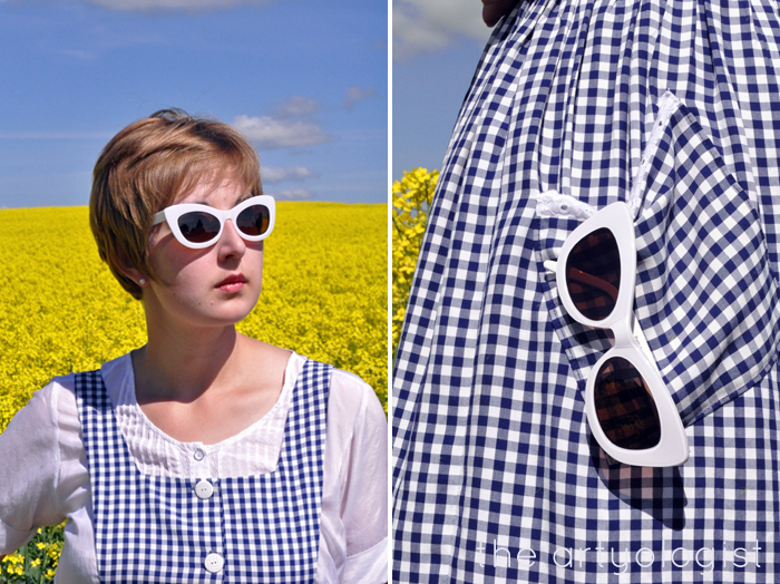 sunglasses in navy gingham pinafore the artyologist