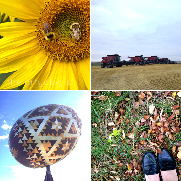 Life Lately: Autumn Comes the artyologist