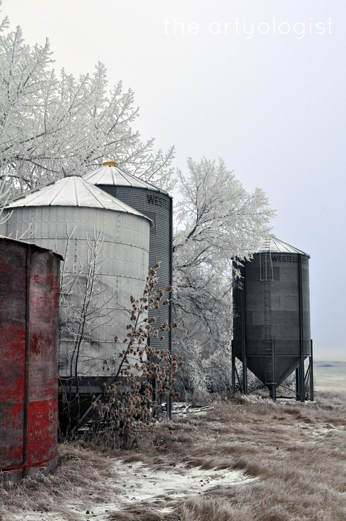 graineries-red, the edge of winter, the artyologist