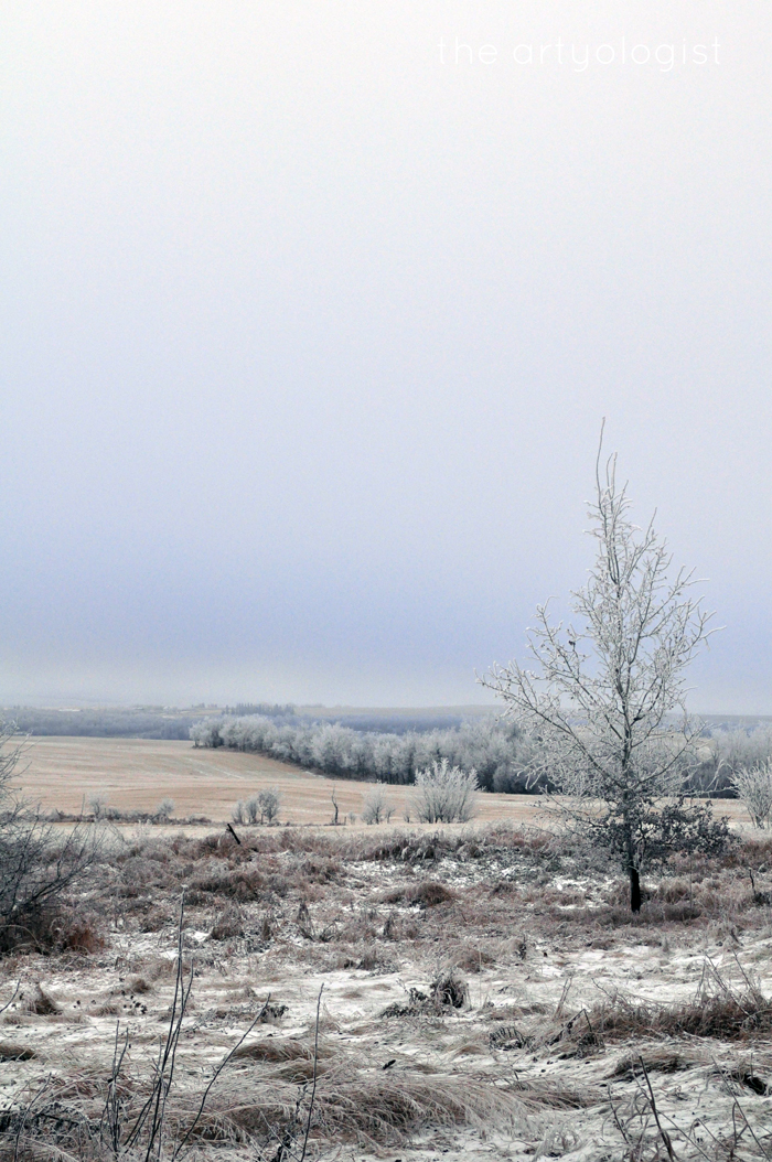 view-of-the-valley, edge of winter, the artyologist