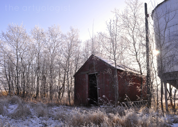 Here Comes The Sun, the artyologist, frosty day
