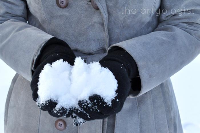 White Wonderland, fresh snow, the artyologist