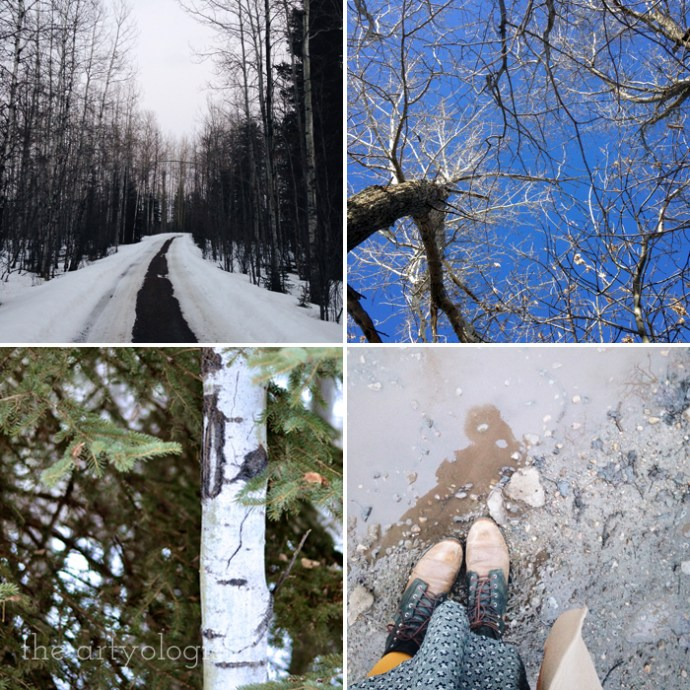 Life Lately: Changing Seasons, the artyologist, spring-images