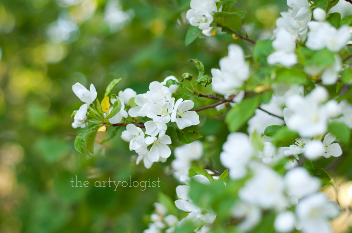 Salvaging a Sewing Project with Vogue 8789, the artyologist, blossoms-1