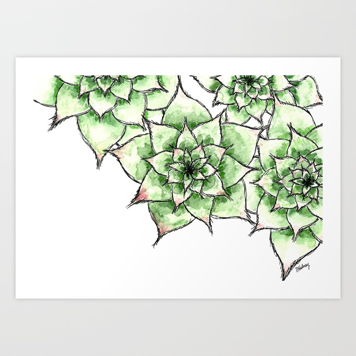 Hens and Chicks, Giclee Print