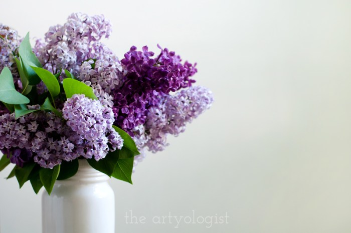 Lilacs to Welcome the First Day of Spring, bouquet, the artyologist